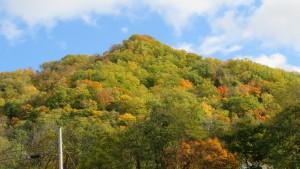 温泉街から見る山の紅葉