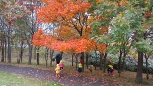 見晴らし山の紅葉