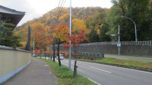 環状通と円山の紅葉