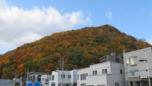 円山の紅葉