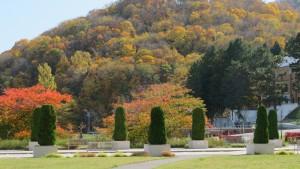 藻岩浄水場と背景の藻岩山の紅葉