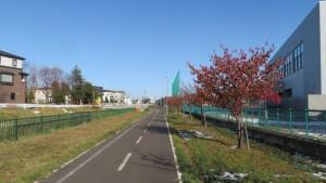北白石小・中学校と北白石サイクリングロード