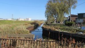 米里川と米里川緑地を望む