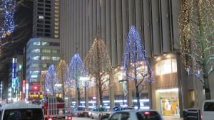 街路樹のイルミネーション