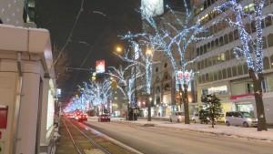 [札幌駅前通会場]街路樹のイルミネーション
