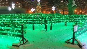 [大通6丁目会場]グリーンに輝く光の迷路