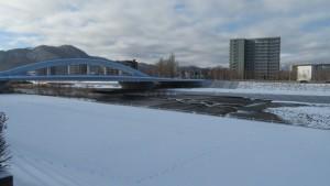 幌平橋と魚道