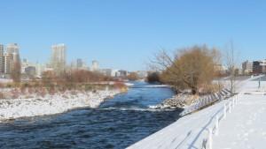 豊平川の流れと河畔林