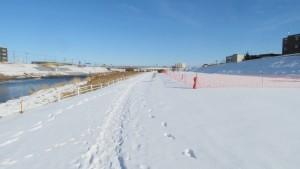 雪堆積場と平和大橋を望む