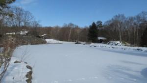 雪に覆われた池