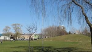 野球場とスキー山