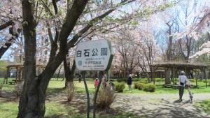 園名板「白石公園」