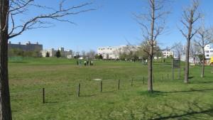 さっぽろ大地公園「芝生広場」