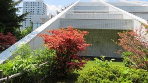 道立近代美術館とヤマツツジ