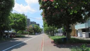 市道北4条線とベニバナトチノキ並木