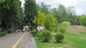 正門に向かう園路と築山