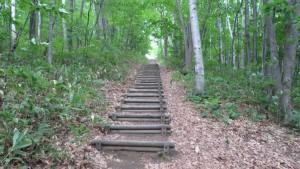 階段のある散策路