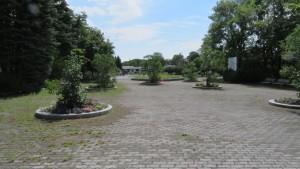 公園入口からボーダーガーデンを望む