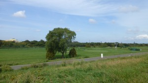雁来河川健康公園ゴルフショートコース