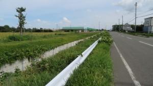 市道8号幹道線と8号幹道排水