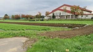 収穫作業中の畑と札幌東豊高校体育館