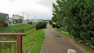 中沼中央川と遊歩道