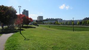 大きな斜面のある馬場公園