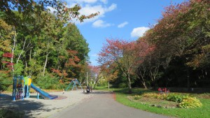 園路と遊具