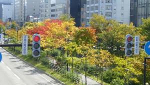 創成川公園の紅葉を望む