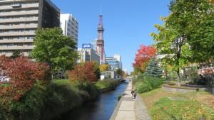 創成川公園の紅葉とテレビ塔