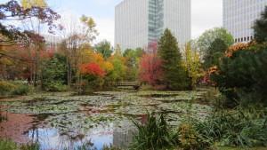 南の池と紅葉と日本生命札幌ビル