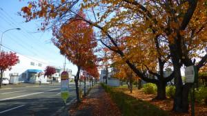 菊水上町3条3丁目バス停と白石公園入口