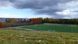 屋外サッカー練習場と紅葉