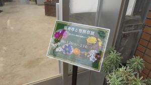 「福寿草と雪割草展」案内板