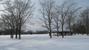 芝生広場へ向かうスキーの跡と大きなあずまや