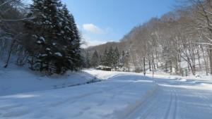 雪の中の園路と厚別川を望む