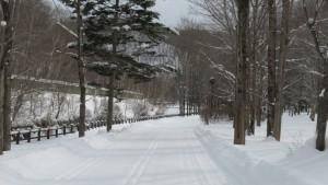 厚別川沿いを通る雪の園路