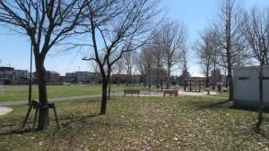 菊水舞鶴公園の木立と園路