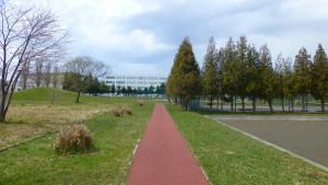 園路とゲートボール場とテニスコート