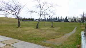 木漏れ日の広場