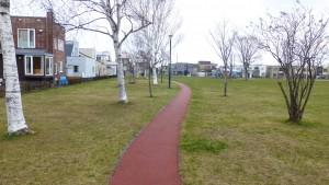 森の散策路(ジョギングコース)
