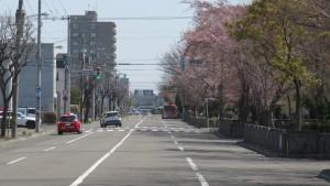市道北27条線と公園通りを望む