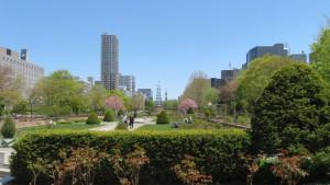 西12丁目からテレビ塔とマイバウムを望む【大通公園】