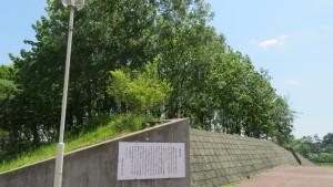 あやめ野中学校「遺跡の森」【白石藻岩通】